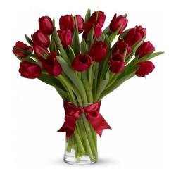 20 Tulips