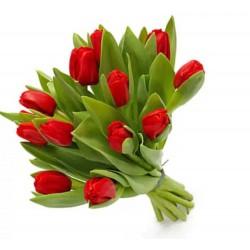 13 Tulips