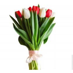 9 Tulips