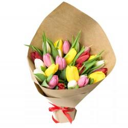 25 Tulips Mix