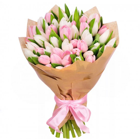 51 White and Pink Tulips