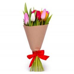 9 Tulips Mix