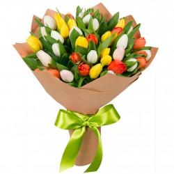 39 Tulips Mix