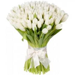101 White Tulips