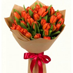 31 Red Tulips