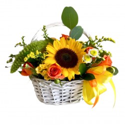 Basket  of Sunflower, Spray Roses, Chrysanthemum, Celosia and Greens