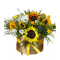 Box of Sunflowers and Chrysanthemums