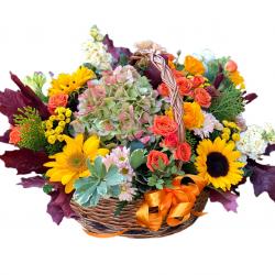 Basket  of Hydrangea, Sunflower, Spray Roses, Chrysanthemum, Celosia and Greens