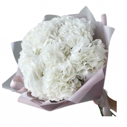 Bouquet of 5 Hydrangeas White