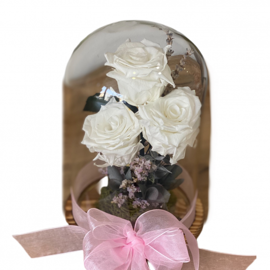 Preserved Roses in the glass
